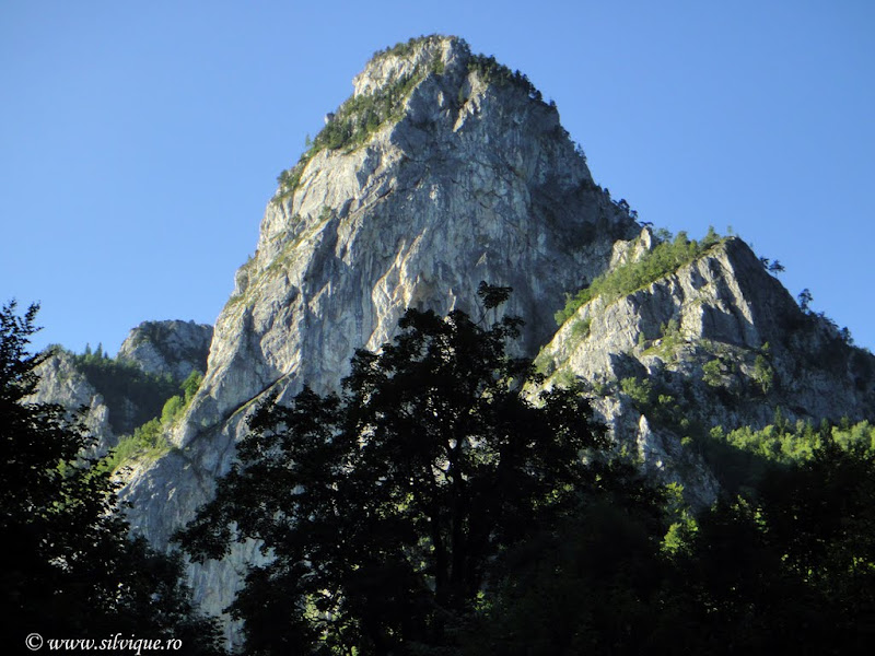 2010.08.23 - Buila (Pheonix si Livada cu Mesteceni)