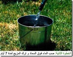compost_tea2