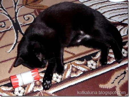 zabawka_dla_kota_4