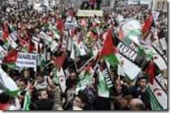 manifestacionsaharaui