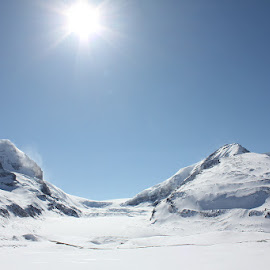 Snow blindness by Lena Arkell - Landscapes Mountains & Hills ( winter, alberta, snow, springtime, sun,  )