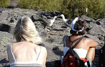 Travellers venture to the Galapagos islands