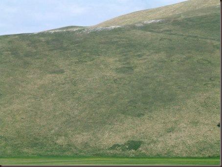 norcia-parco nazionalo di monti sibilini 080 []