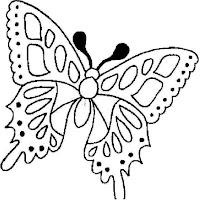 Riscos - Insectos (14).jpg