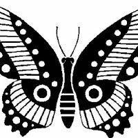 Riscos - Insectos (18).jpg