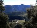 Puerto Pitillos y el Quejigo centenario del Amo, o del Carbón