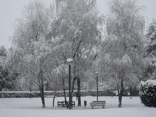 Parco della Resistenza - Cuneo