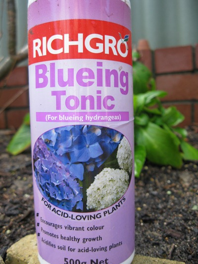 blueing tonic