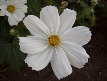 October2010 052