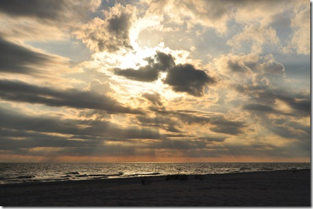 Florida Nov 2010 010