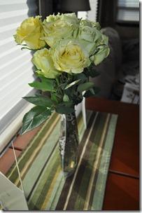 Birthday Roses 002