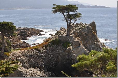 Monterey, Ca 123
