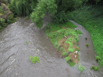 merri_creek_130111 (Medium)