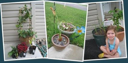 View My garden 1