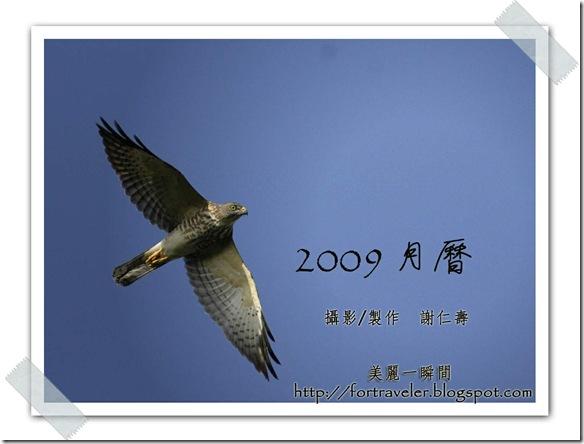 封面  赤腹鷹(攝於  墾丁社頂)2