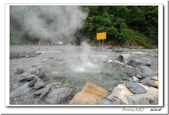清水地熱(2008-07-01)0029