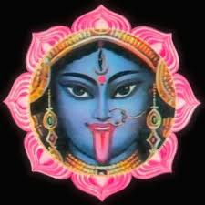 Kali Cover