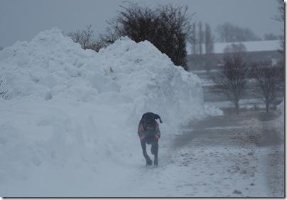 Schneetreiben in Heiligenhafen, H. Brune