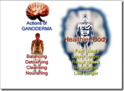 Actions_of_Ganoderma