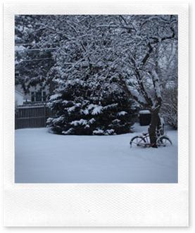 1.7.10 Snow (1)