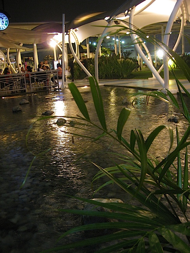 pond at SM North EDSA mall's Sky Garden
