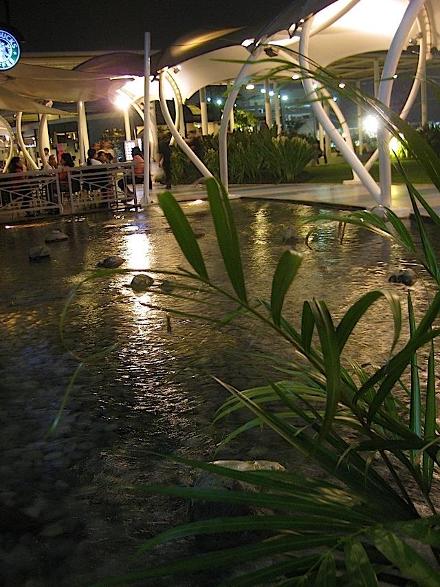 pond at SM North EDSA mall's Sky Garden