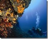 Il mondo sottomarino