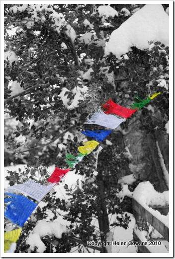 prayer flags2 copy