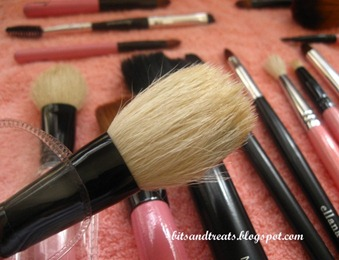dried charm powder brush, by bitsandtreats