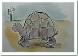prairie tortoise