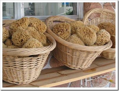 sponges (a)