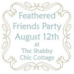 feathered-friends-party