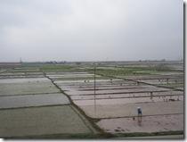 農家の風景②
