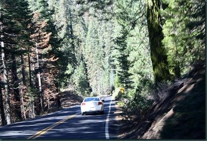 To California via Yosemite 158