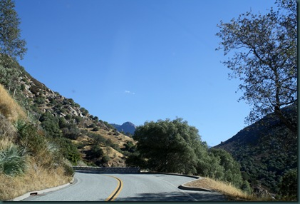 Sequoia National Park 032