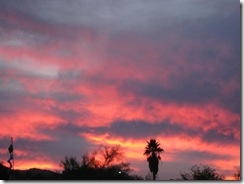 Happy Hour and Az. sunset Jan. 2010 002