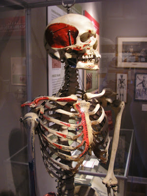 Send us your bones, dummy!