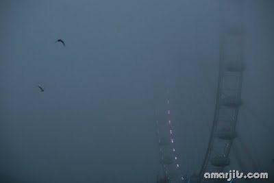 Fog_amarjits (16)