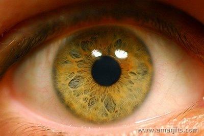 Beautiful-Eyes-amarjits-com (3)