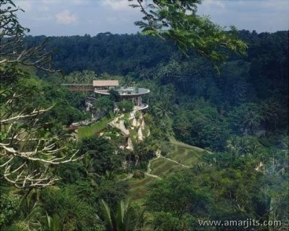 Jungle-Hotel-amarjits-com (2)
