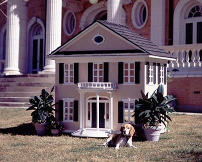 Dog-House-amarjits (20)