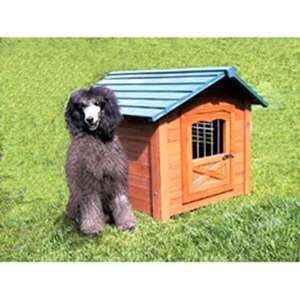 Dog-House-amarjits (3)