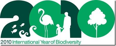 IYB2010_Logo_English