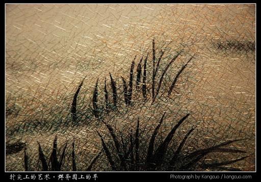 群奔图上的草