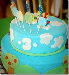 3 cake (1 of 1)