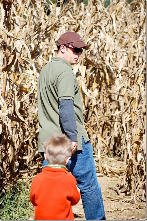 corn maze2 (1 of 1)