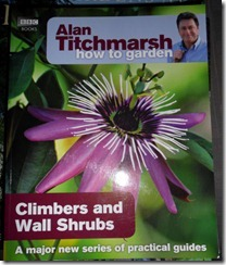 AT_ClimbersAndWallShrubs