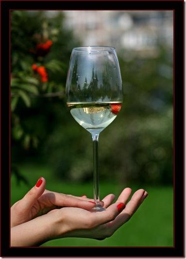 Rowan wine