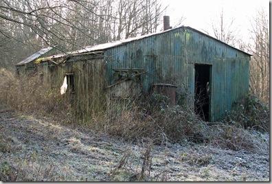 20081229 Brede High Wood 3c 014