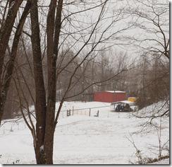 snow days 003